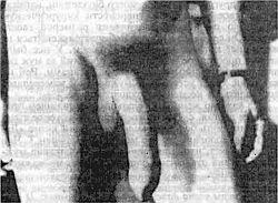 Описание книги Гэри Гриффин. Пособие Как увеличить размер члена (1998)