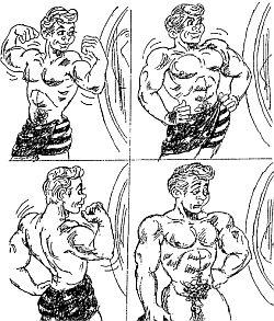 размеры мужских половых органов фото