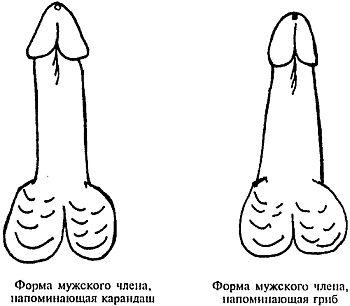 как увеличить толщину пениса Свирск