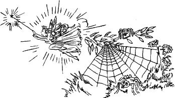 Мафин и паук раскраска