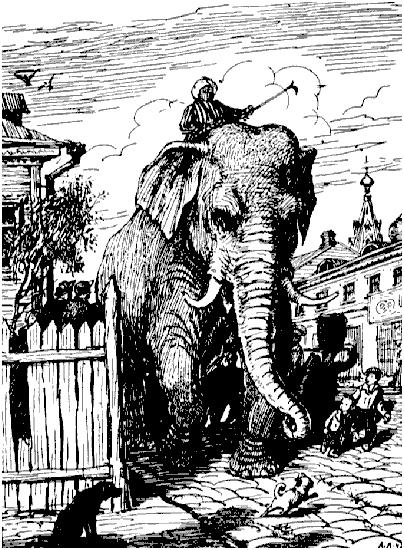 По улицам слона водили как видно